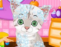 cute-pet-salon-med